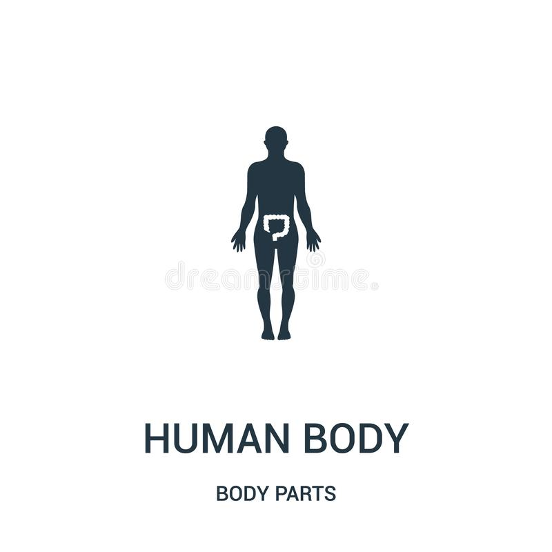 human body silhouette with highlight on large intestines icon vector from body parts collection. Thin line human body silhouette stock illustration