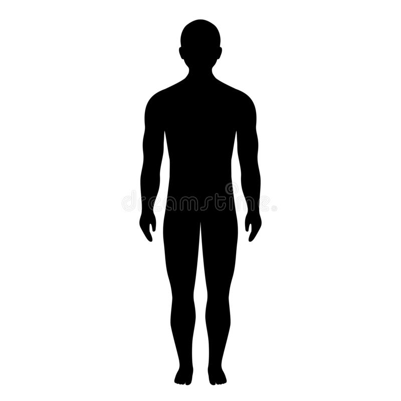 Free Human Body Silhouette, Vector Icon Royalty Free Stock Images - 215016259