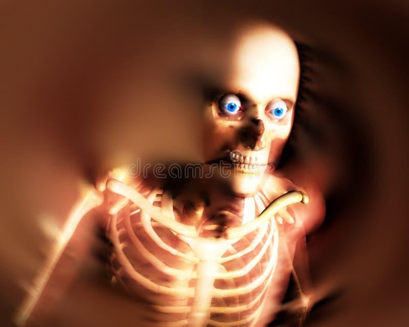 Download Human Bones 8 stock illustration. Image of sockets, hospital - 3368578