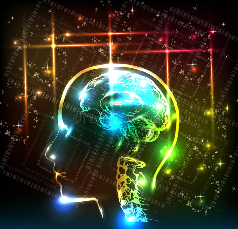 Download Human brain stock vector. Illustration of solving, analysis - 19944170