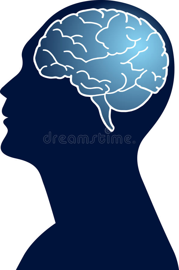 Download Human brain stock vector. Image of clip, analyzing, healthy - 26572373