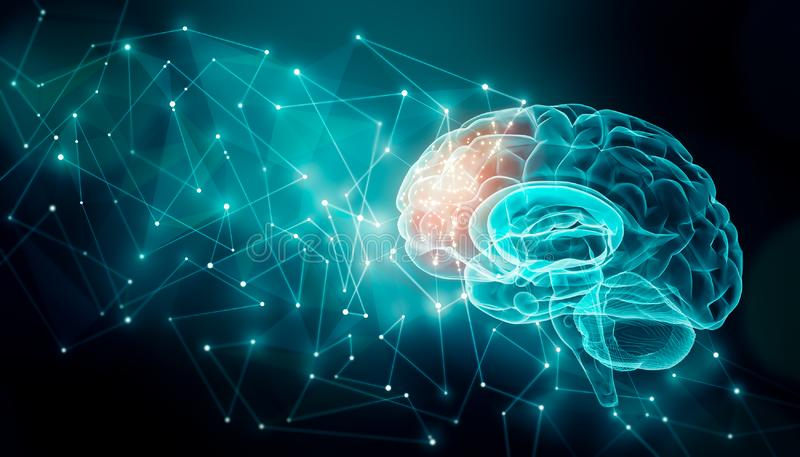 Human brain activity with plexus lines.. External cerebral connections in the frontal lobe. Communication, psychology, artificial stock illustration
