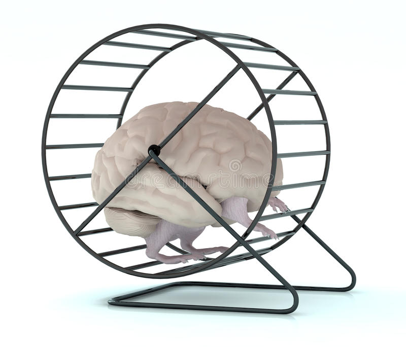 Human brain with arms and legs in hamster wheel royalty free illustration