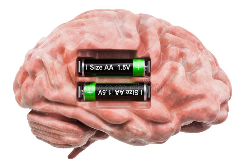 Human brain with batteries. Recovery and treatment concept. 3D rendering. Isolated on white background vector illustration