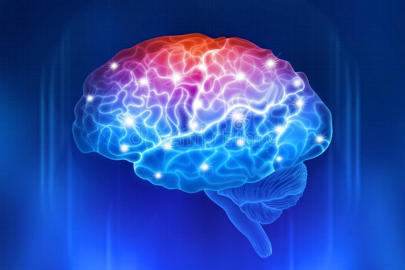 Human brain on a blue background. Active parts of the brain. Digital illustration vector illustration