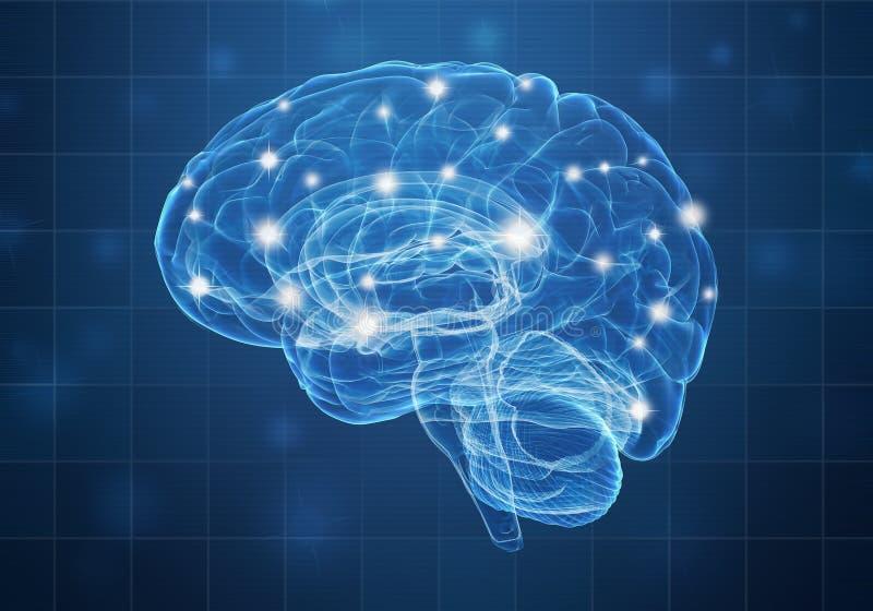 A human brain on blue background stock illustration