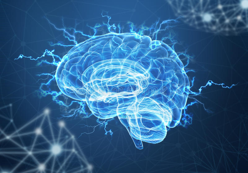 A human brain on blue background. Concept of human intelligence with human brain on blue background stock photo