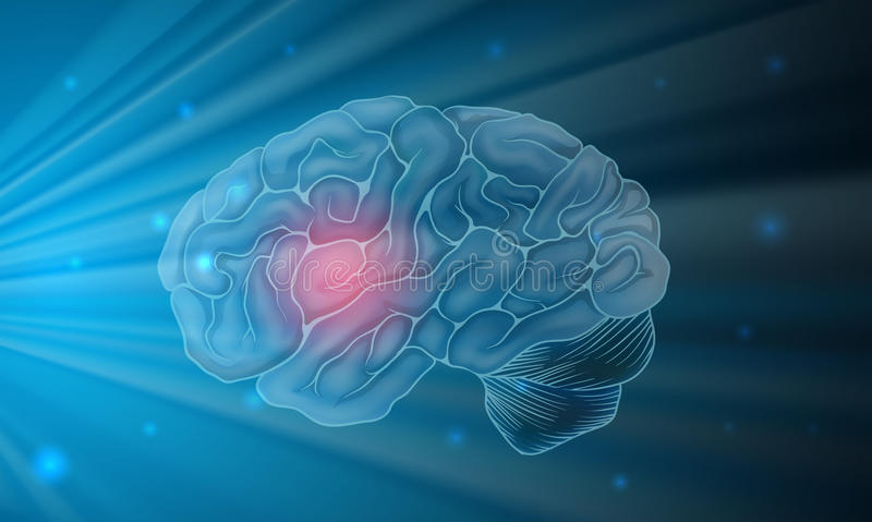 Human brain with blue background royalty free illustration