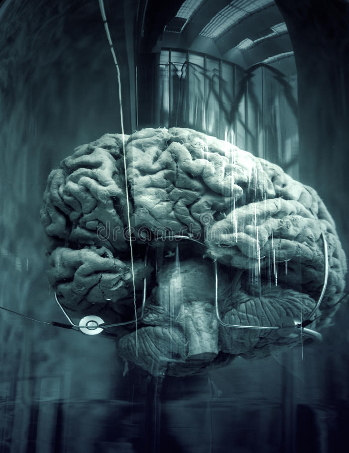 Human brain in boat. With liquid, laboratory and experiments stock image