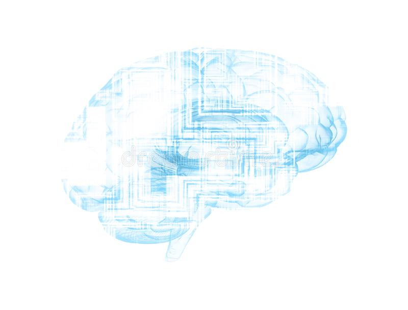 Human brain and circuit board stock photo