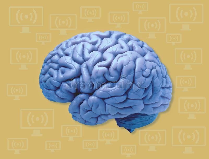 Human Brain and Computers Connect stock photography