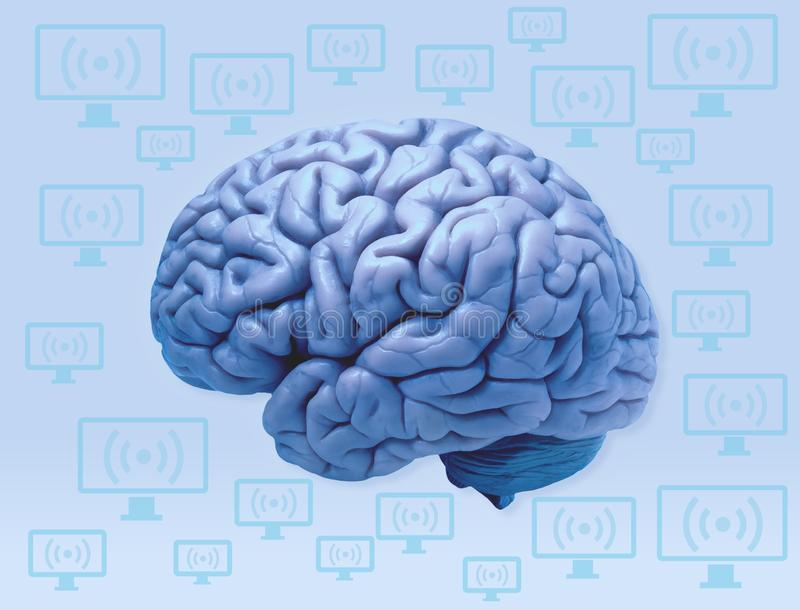Human Brain and Computers Connect royalty free illustration