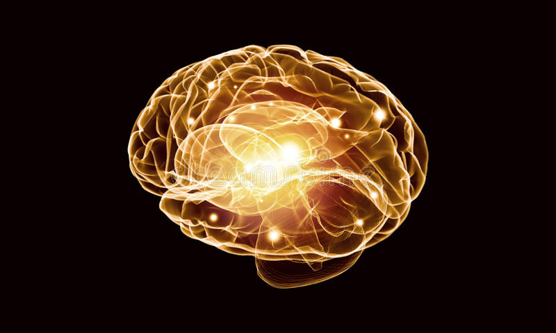 Human brain. Concept of human intelligence with human brain on black background royalty free stock images