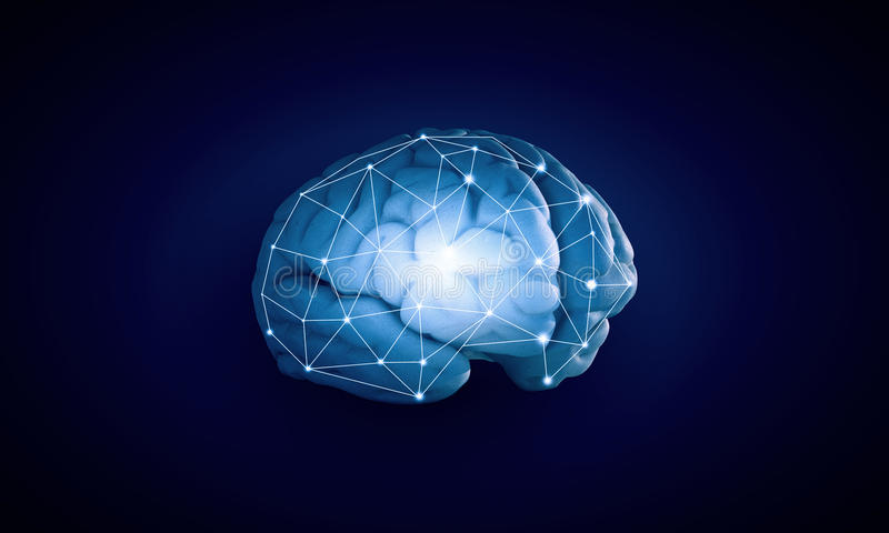 Human brain. Concept of human intelligence with human brain on blue background stock photos