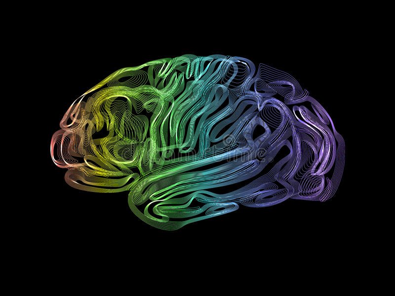 Human brain. Creative concept of the human brain royalty free illustration
