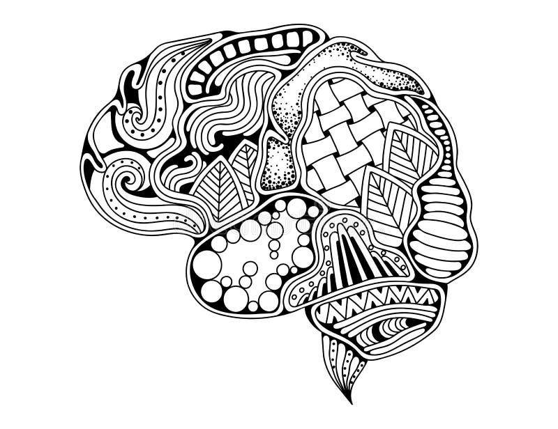 Human brain doodle decorative curves, creative mind stock illustration