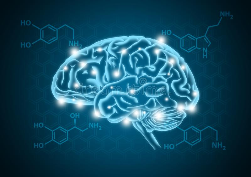 Human brain illustration with hormone biochemical concept background vector illustration