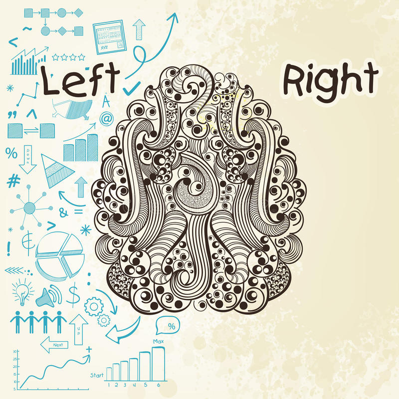 Human brain infographic with left and right hemisphere. Illustration of human brain showing left analytical part with different infographic elements vector illustration