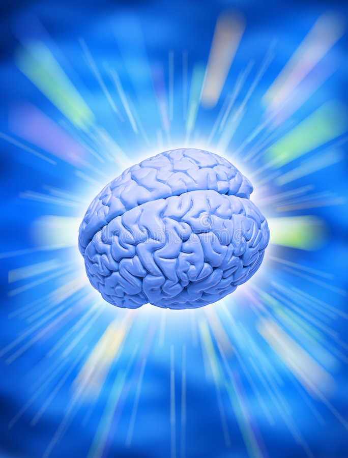 Human Brain Intelligence Creativity. A human brain on a vivid blue background royalty free stock photo