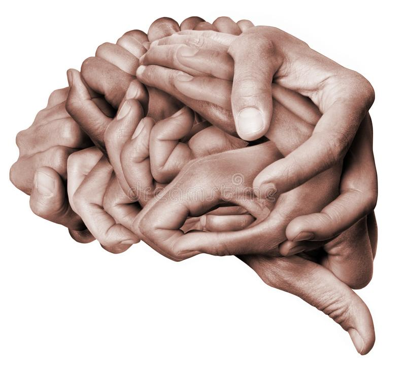 Human brain made with hands. A human brain made with hands, different hands are wrapped together to form a brain. Colored with white background royalty free stock photos