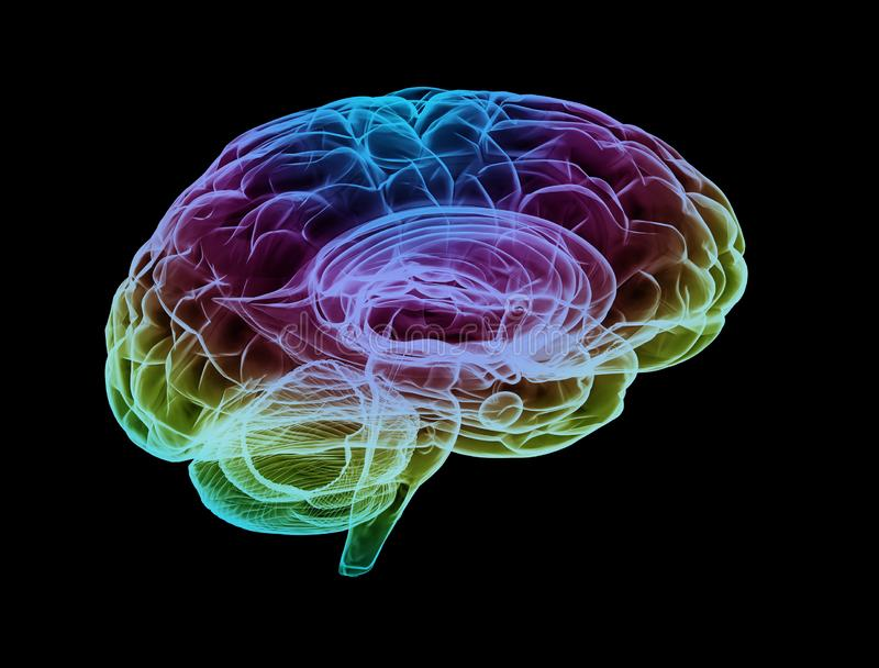 Human brain multi color stock photo