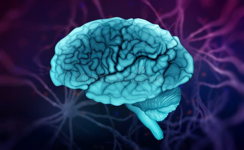 Human brain. Neural communications. Thinking, Intelligence, Mind, Creativity royalty free illustration