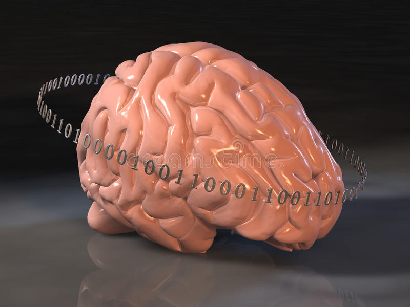 Human brain surrounded by binary code vector illustration