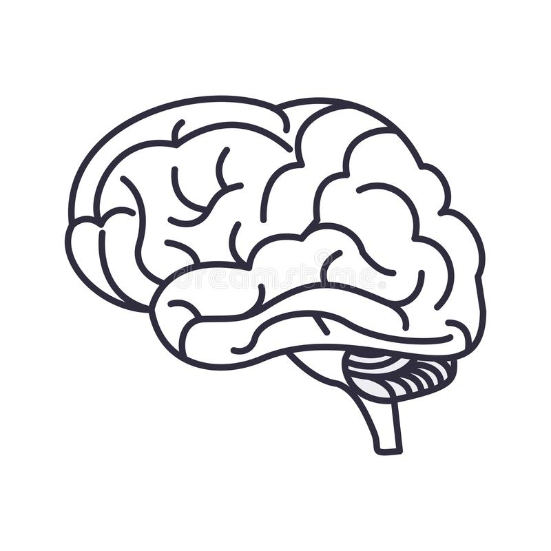 Human brain symbol. In black and white vector illustration graphic design royalty free illustration