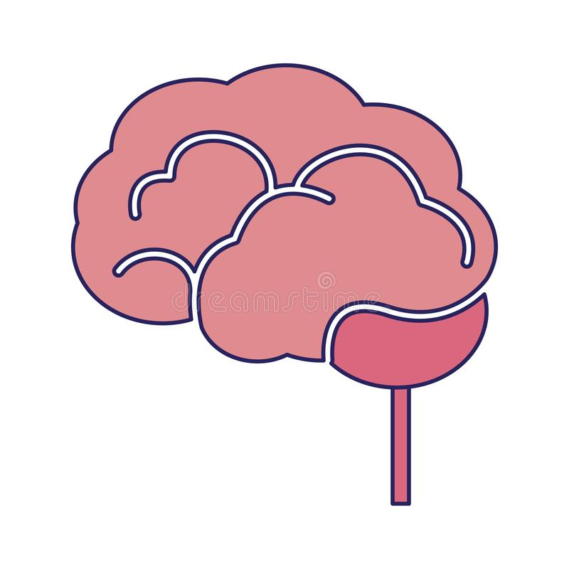 Human brain symbol. Human brain simple symbol vector illustration graphic design stock illustration