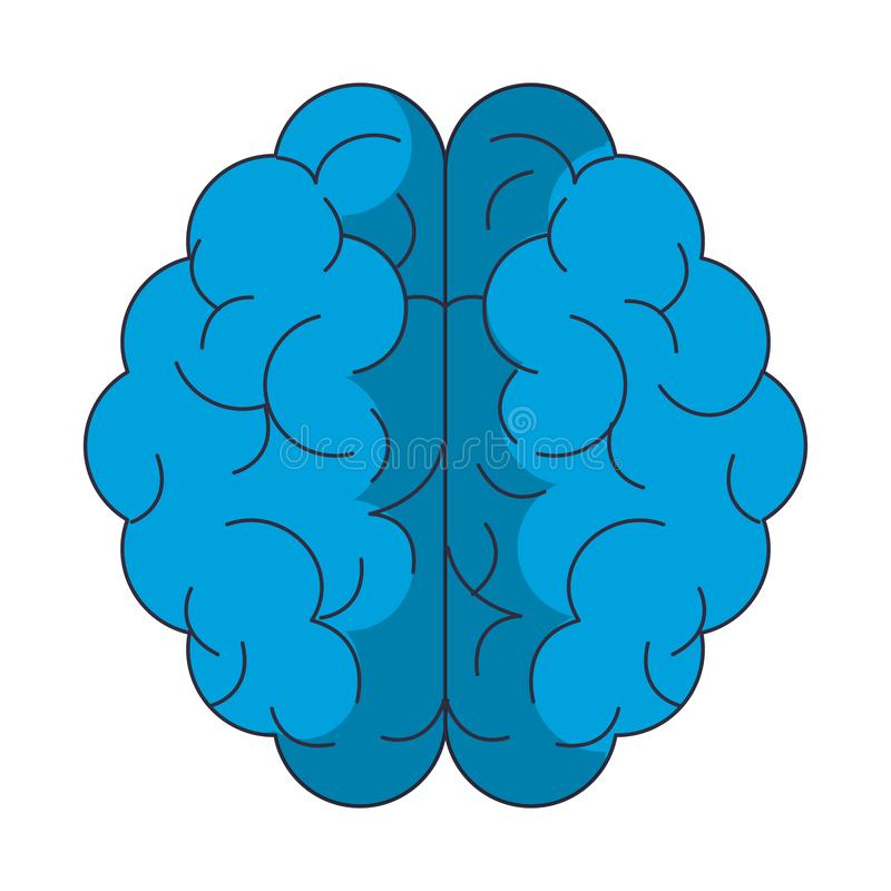 Human brain symbol. Vector illustration graphic design vector illustration