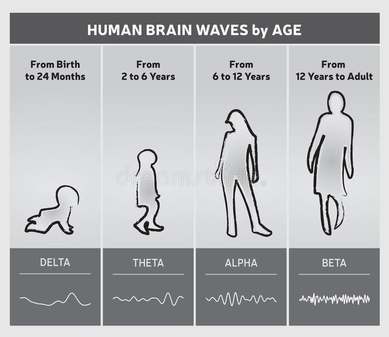 Human Brain Waves by Age Chart Diagram - People Silhouettes. 4 Stages in Gray Tones royalty free illustration