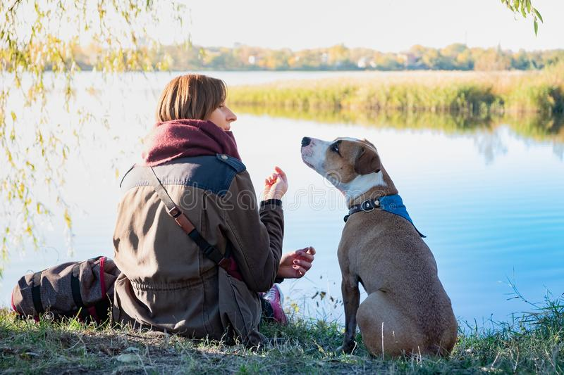 Human communicating with dog. Young dog sits and listens to her. Female owner in beautiful nature near a lake royalty free stock photo