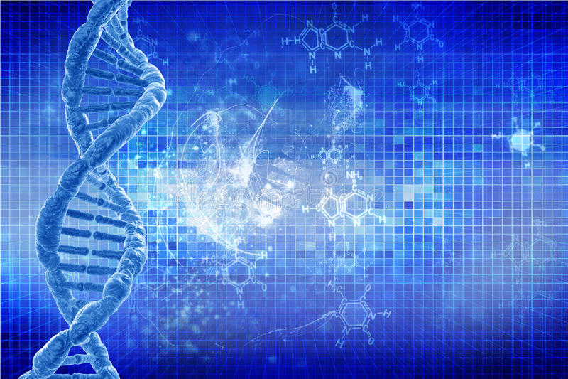Human DNA stock illustration