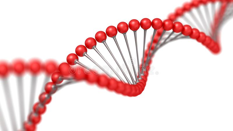 Human DNA strand. digital 3d illustration isolated on the white background, clipping path included. Science and medical technology royalty free stock images
