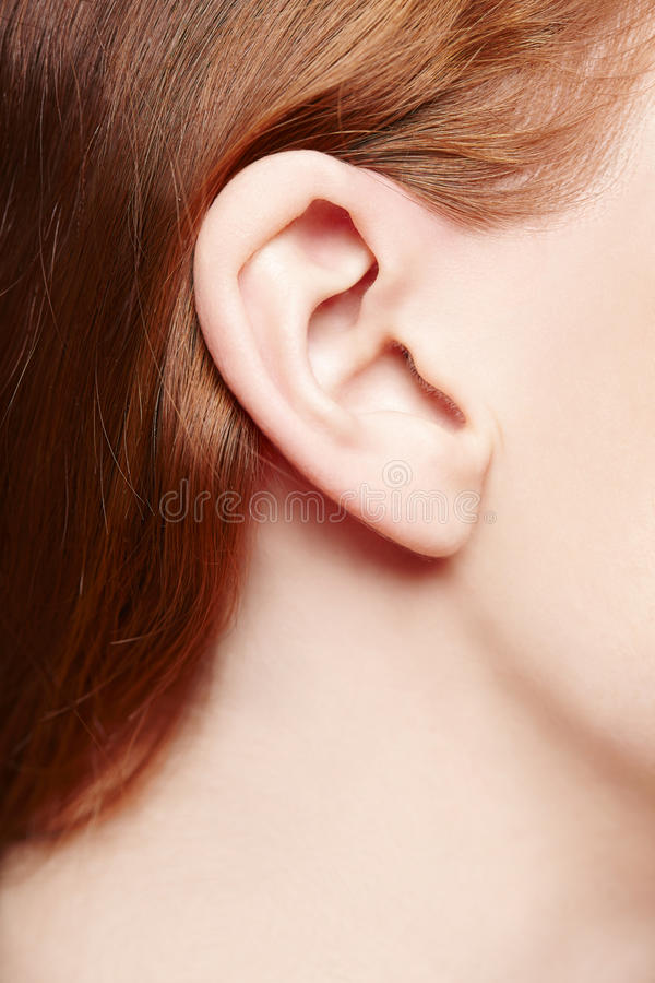 Human ear closeup stock photo