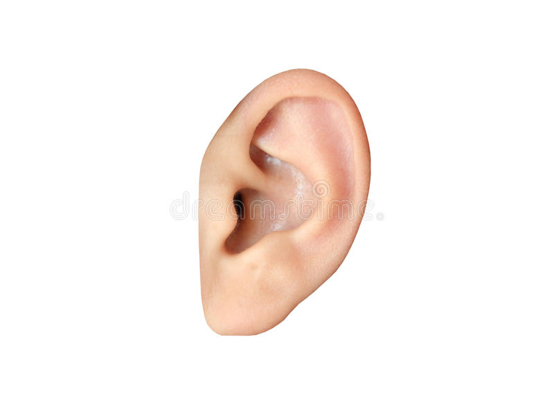 Human ear closeup stock photos