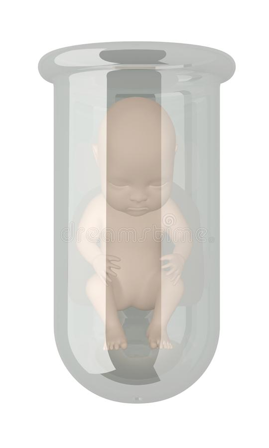 Human embryo in vitro. Isolated on white. 3d rendering royalty free illustration
