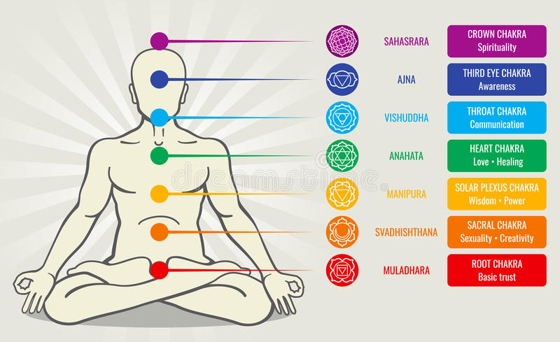 Human energy chakra system, ayurveda love asana vector illustration. Sahasrara and ajna, vishuddha and anahata royalty free illustration