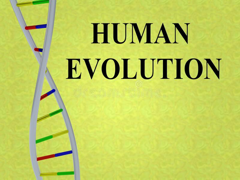 HUMAN EVOLUTION concept. 3D illustration of HUMAN EVOLUTION script with DNA double helix, isolated on colored background royalty free illustration