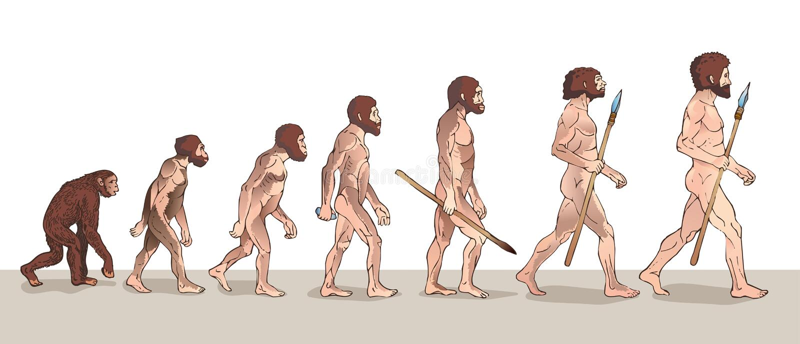 Human Evolution. Man Evolution. Historical Illustrations. Human Evolution Vector Illustration. stock illustration