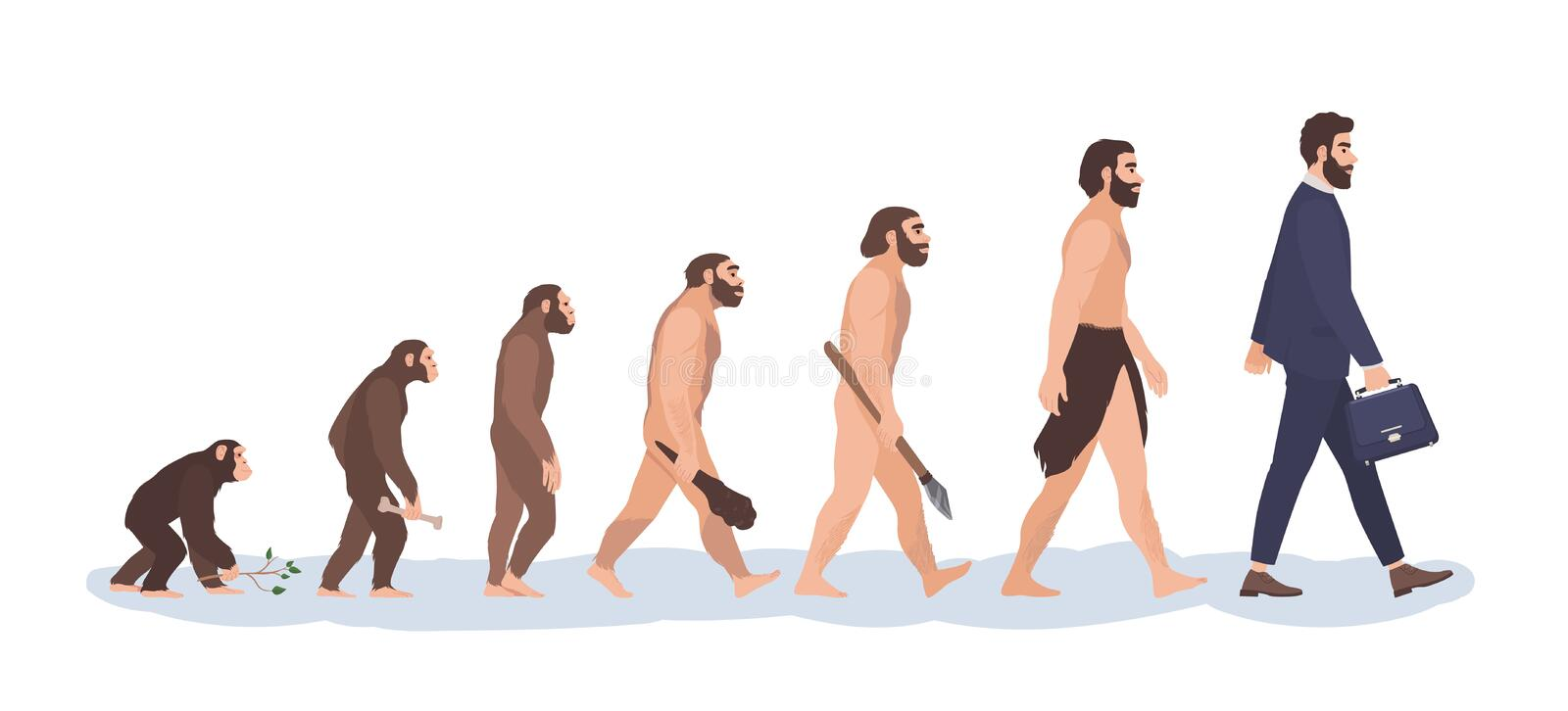 Human evolution stages. Evolutionary process and gradual development visualization from monkey or primate to businessman vector illustration