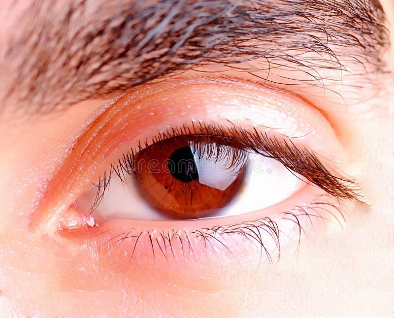Download Human Eye Royalty Free Stock Photography - Image: 14364087