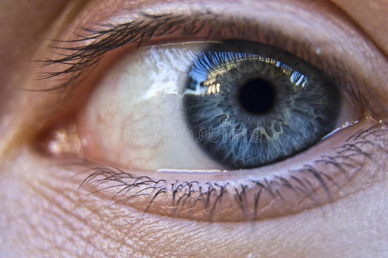 Download Human eye stock image. Image of soft, vision, care, macro - 26302633