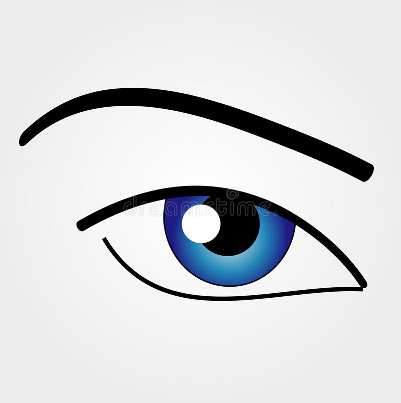 The Human Eye. With blue lens royalty free illustration