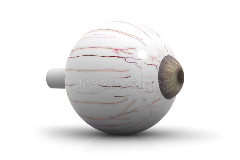 Human eye. 3d render of Human eye stock illustration