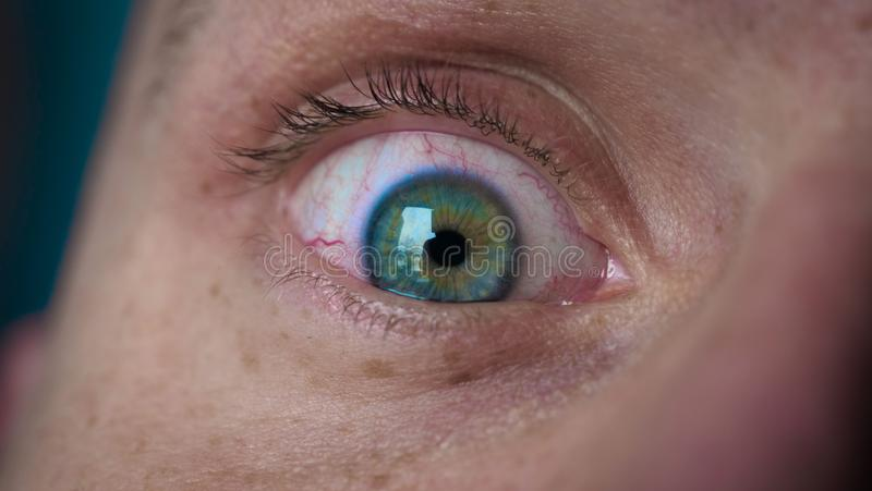 The human eye is depicted very closely with the brown hazel color of the movement of the eye and blink. Concept of: Hazel, Close. To the eye, Man, Woman royalty free stock photo
