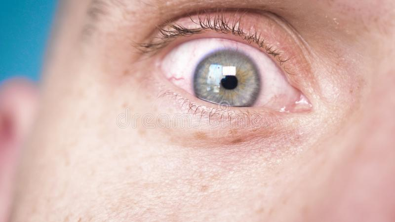 The human eye is depicted very closely with the brown hazel color of the movement of the eye and blink. Concept of: Hazel, Close. To the eye, Man, Woman stock photos