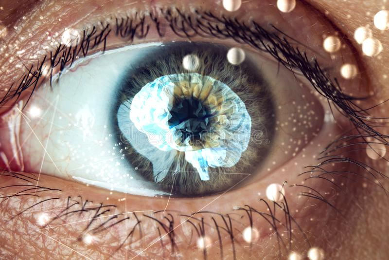 The human eye with the image of the brain in the pupil. Concept of artificial intelligence stock photography