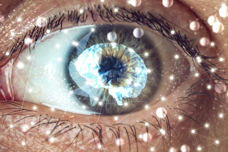 The human eye with the image of the brain in the pupil. Concept of artificial intelligence. The human eye with the image of the brain in the pupil. The concept stock photography