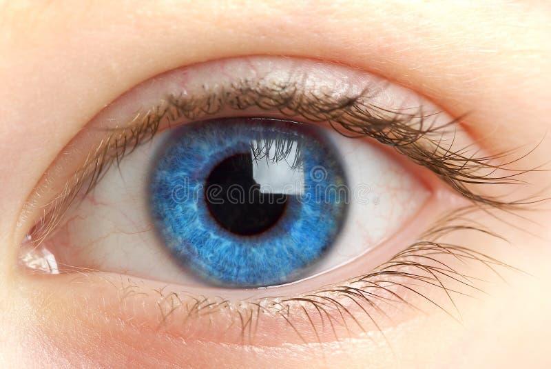 Human eye. macro shooting... royalty free stock photography